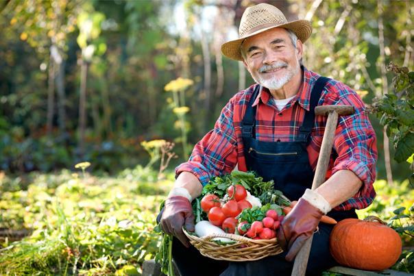 Bahçıvan ve Villa Personeli