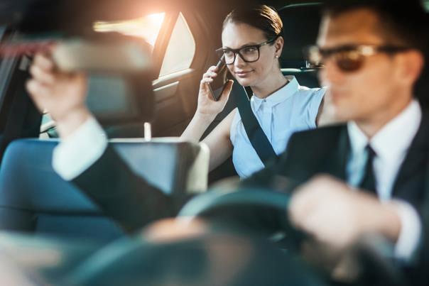 Şoför ve Güvenlik Elemanı